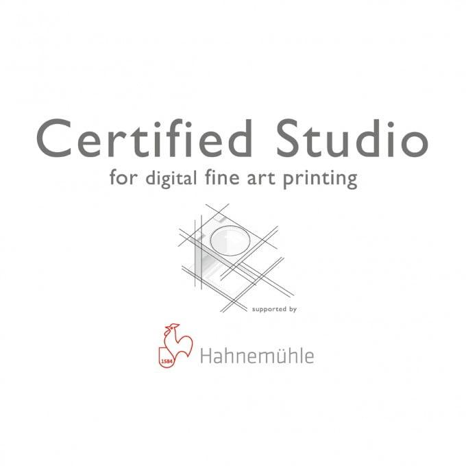 Certificate HAHNEMÜHLE Studio